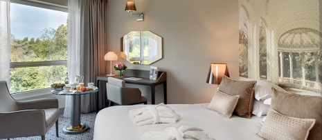 vichy-celestins-spa-hotel-reservation-chambre-deluxe2